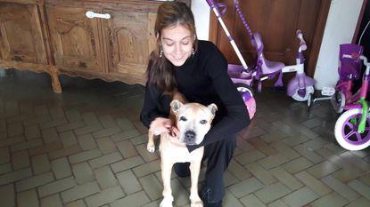 Hond vier dagen lang aan lot overgelaten nadat baasje onwel werd