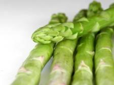 RIVM: groentes uit moestuin Helmond veilig