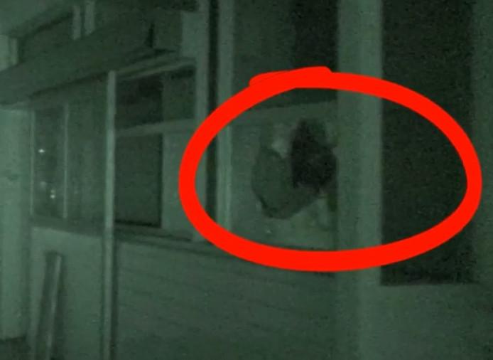 Een schim zou achter het raam hebben bewogen
