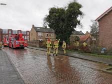 Brandweer zaagt boom om die door de storm op woning dreigde te vallen in Wageningen