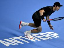 Murray rejoint Wawrinka pour une finale de rêve à Anvers