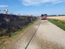 Bermbrand blakert 150 meter dijk zwart bij IJzendijke