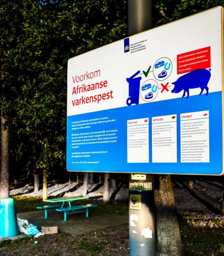 Waarschuwingsbordjes over Afrikaanse varkenspest op de Veluwe