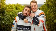 """McLaren-baas onder de indruk van Stoffel: """"Alonso had soms een betere wagen dan Vandoorne"""""""