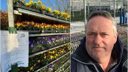 """Bloemenkweker krijgt politie over de vloer: """"Verboden om thuis viooltjes te verkopen"""""""