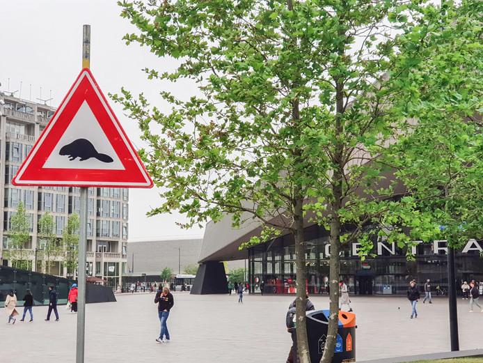 Een waarschuwingsbord voor bevers op het Stationsplein.