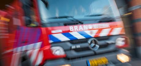 Brandweer rukt met spoed uit voor bosbrand in Waalre
