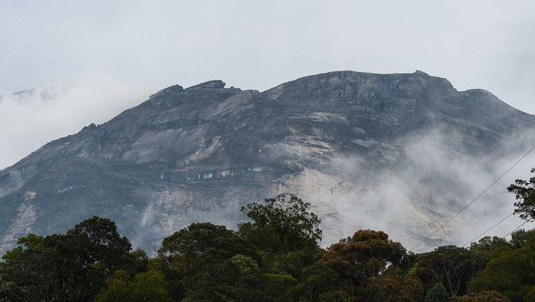 De heilige berg Kinabalu, waar bergbeklimmers vast kwamen te zitten na de aardbeving van vrijdag. Beeld afp