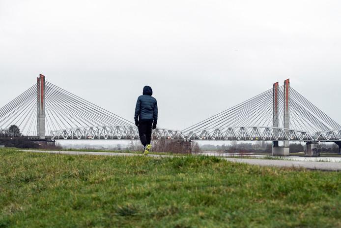Martinus Nijhoffbrug bij Zaltbommel, met de spoorbrug ernaast.