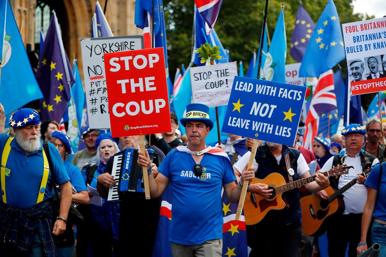 Pro-Brexit-demonstranten bij het Lagerhuis in Londen.