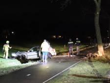 Auto raakt van de weg en botst tegen boom in Lunteren: bestuurder gewond