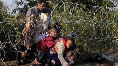 """Streng asielbeleid van Hongaarse premier Orban voor de rechter: """"Regels worden overtreden"""""""