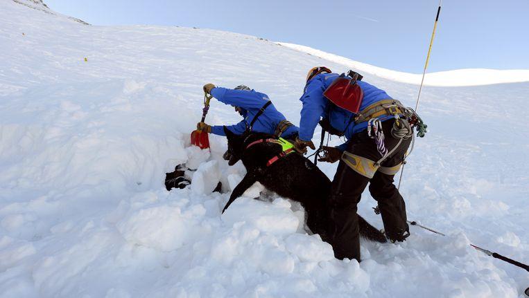 Lawine-training in het Franse Les Deux Alpes. Beeld AFP