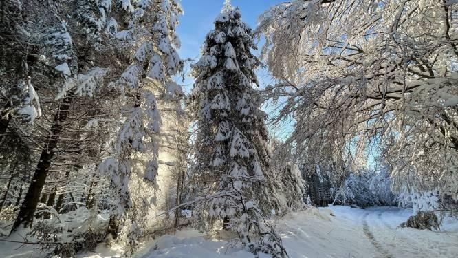 Lokaal tot 1 meter verse sneeuw op weg naar Frankrijk en Zwitserland
