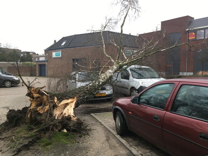 Stormschade in Gemert op Elisabethplaats