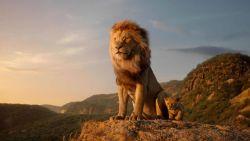 Disney draait recordjaar na 'Avengers' en 'The Lion King', en er komen nog méér blockbusters aan