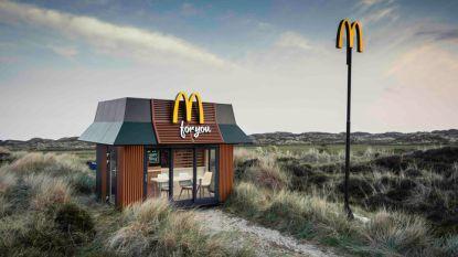 Mini McDonalds voor op je feestje? Het kan deze zomer