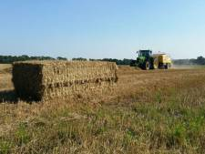 Klacht van boeren over verkoop Zeeuws-Vlaamse grond onontvankelijk verklaard