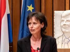 GroenLinks: 'Groen in Amersfoort horen over rondweg niet meer dan fatsoenlijk'