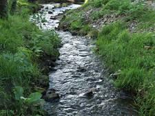 Wandeling langs bronnen in Dal van Mosbeek