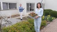 CD&V Pepingen brengt bloemen van afgelast eetfestijn naar woonzorgcentrum