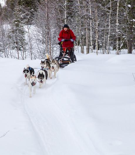 Dit Nederlandse echtpaar is al twee maanden ingesneeuwd in Zweden