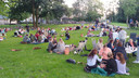 Picknicken in het Julianapark in Veghel.