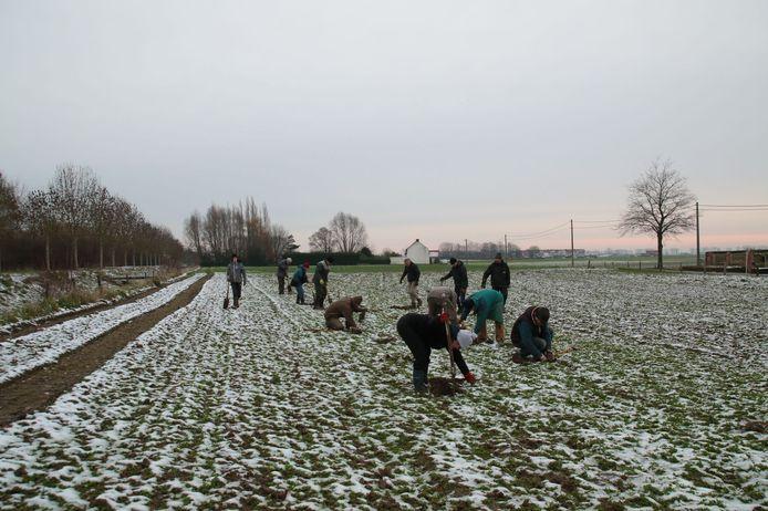 Een beeld van de aanplant van het Waterhoevebos, afgelopen zaterdag.