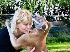 Moet Helma binnenkort haar kangoeroes afstaan?