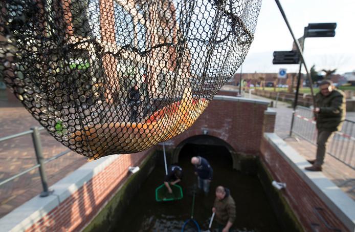 Hans van Manen moest op last van de Rijksdienst voor Ondernemend Nederland in april de goudvissen die hij eerder uitzette weer uit de gracht in Veenendaal vissen.