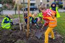 Ook in Oudenbosch werd geplant tijdens Boomfeestdag. Elders gierden de kettingzagen.