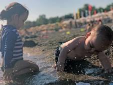 Spelen aan de vloedlijn, schattige babyzwaantjes en zonsopkomst vanuit een luchtballon