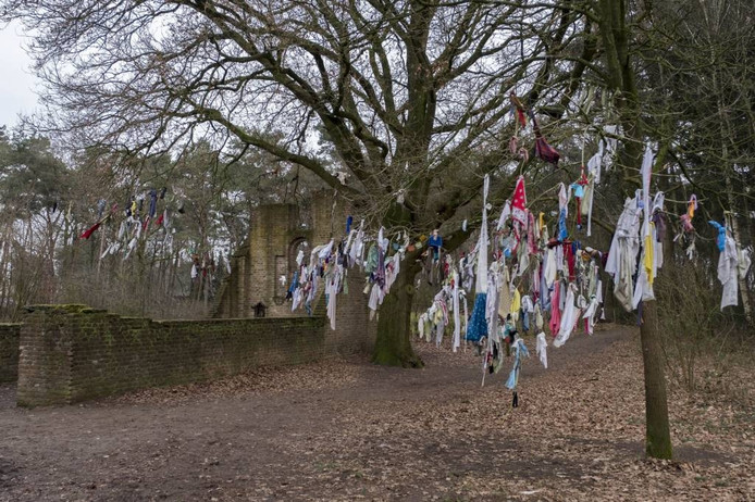 De koortsboom in Overasselt hangt vol kledingstukken.