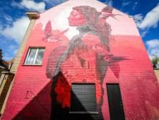 Twee kunstwerken van Brugs streetartfestival 'The Bridges' genomineerd voor Best of Belgium Street Art 2020