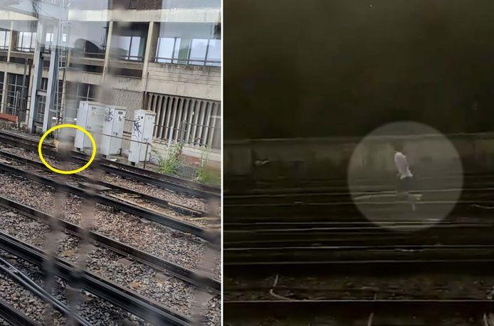 Treinreizigers schreven op Twitter dat ze een hond over het spoor zagen lopen.