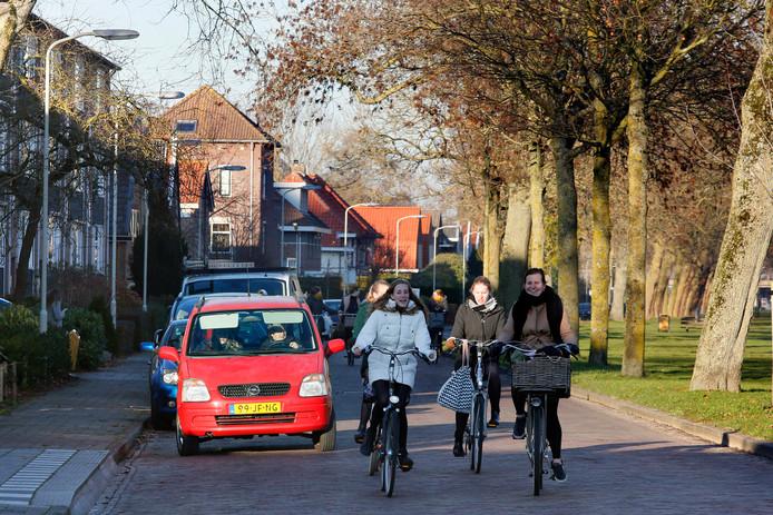 Fietsers en een automobilist rijden samen op de Grote Haarsekade. Rechts staan bomen en langs de weg staan ook nog auto's geparkeerd.