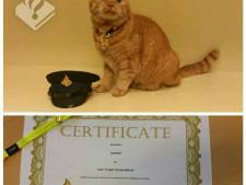 Politiekat Garfield onderscheiden voor 'trouwe dienst'