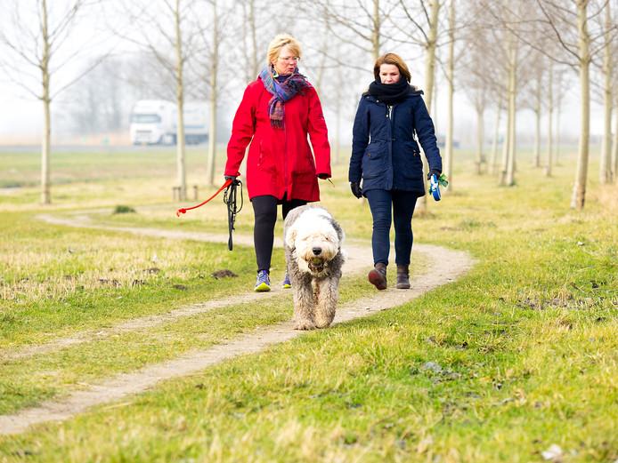 Het wandelpad tussen geluidswal en N11 langs de ringweg van Alphen aan den Rijn. Heleen  en Mathilde laten hun honden uit.