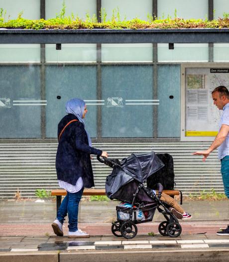Voorlopig geen bushokjes met groen dak in Den Bosch