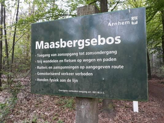 Het Maasbergsebos in Arnhem.