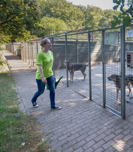 Onverklaarbare stijging van gedumpte dieren Hof van Ede