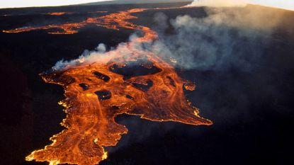 Hawaiiaanse vulkaan Mauna Loa is (opnieuw) 's werelds grootste vulkaan