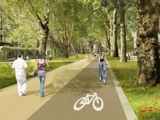 Liège: 540 arbres vont être plantés le long du tracé du tram