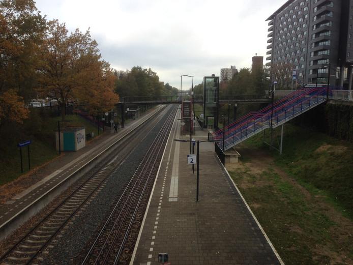 Bij Heyendaal is de ruimte van het oude spoor naar Duitsland (rechts) nodig voor de vernieuwing van het station. Volgens wethouder Tiemens hindert dit echter niet het herstel van de spoorverbinding met Kleef.