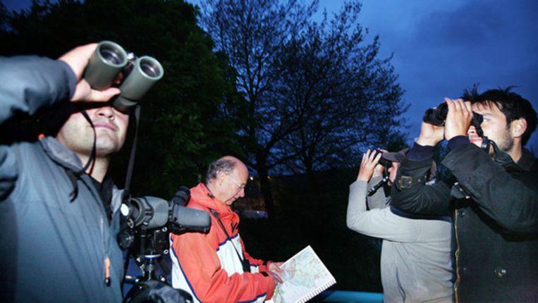 Amsterdam , 4 mei 2012. Team dat meedoet aan 24 uurs race om zoveel mogelijk vogels op te sporen en te noteren in Amsterdam en omgeving Noord Holland. Beeld Foto: Jean-Pierre Jans. Zie ook: http://www.jeanpierrejans.nl/