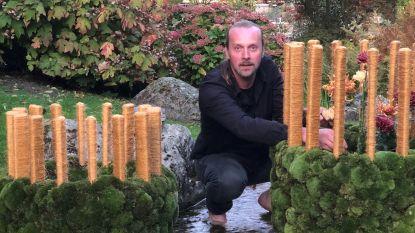 Vanaf dit weekend chrysantenfestival in Japanse tuin