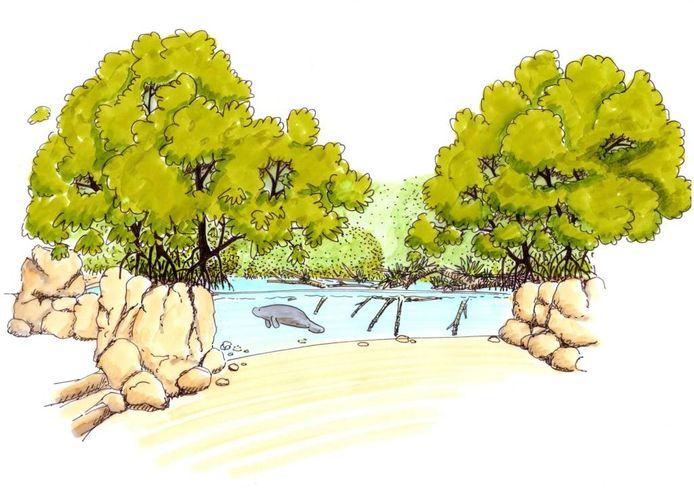 Verblijf voor de zeekoeien in de nieuw te bouwen mangrove.