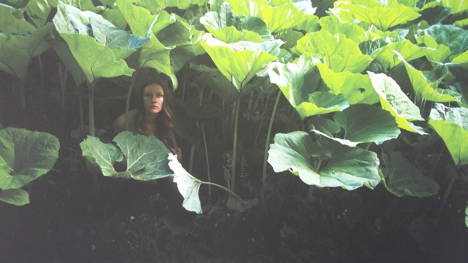 Anne Nobels kiest ervoor bij deze serie zelf op de foto te gaan. ,,Het is zulk persoonlijk werk dat ik vind dat ik wel moet.''