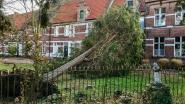 Storm mogelijk erkend als ramp
