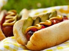 IKEA komt met vegetarische hotdog